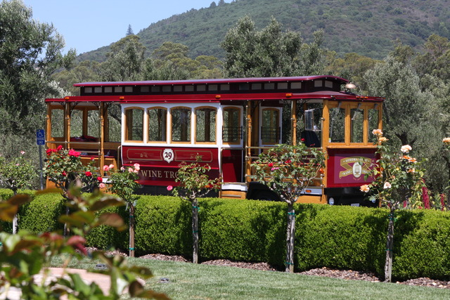 Photo Gallery Sonoma Valley Wine Trolley