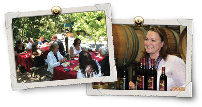 sonoma valley wine trolley tours