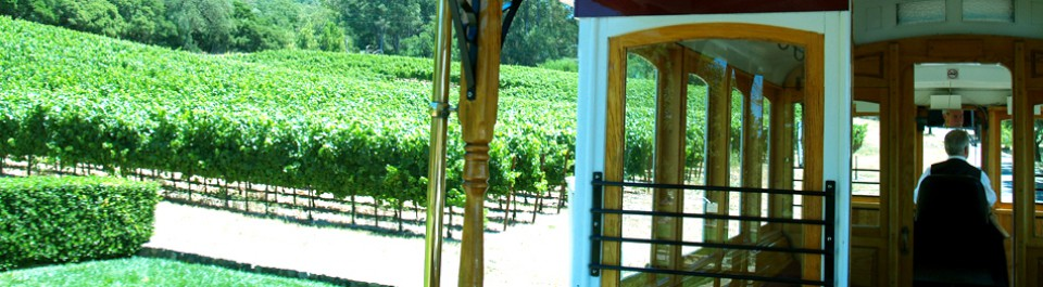 sonoma valley wine trolley 4